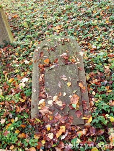 cmentarze 14