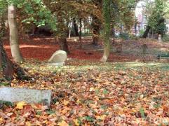 cmentarze 17